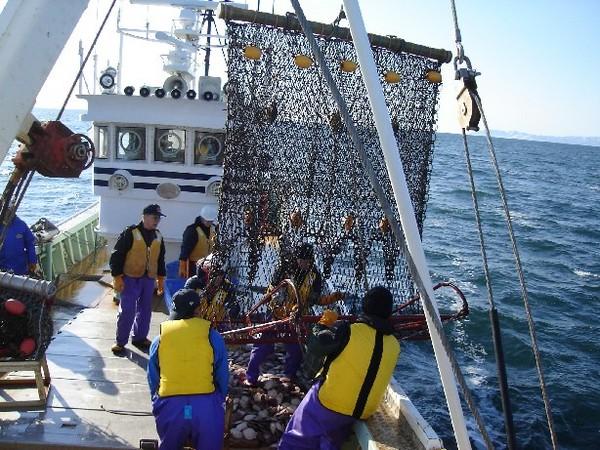 漁業 | 北海道猿払村